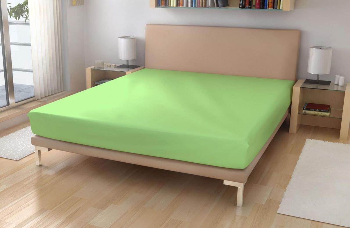 Froté prostěradlo EXKLUSIVE Světle zelená 90x200 cm