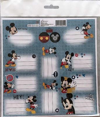 Samolepící jmenovky Mickey Papír, 20x20 cm