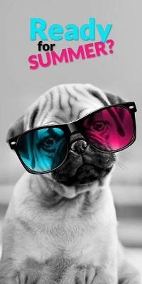 dl_166897_osuska_sweet_animals_pes_70_140